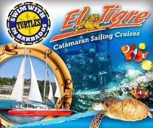 small cats related links, el tigre catamaran sailing cruises picture link