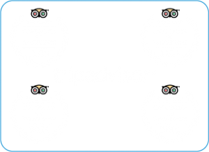 small cats tripadvisor certificates 2013-2016 no link